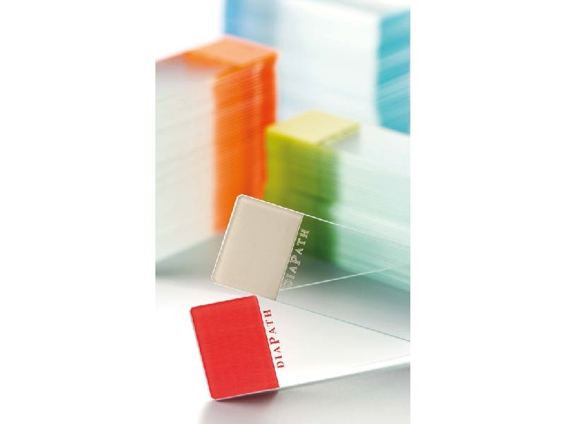 Diapath microscope slides, bevelled edge 45°, green marking area